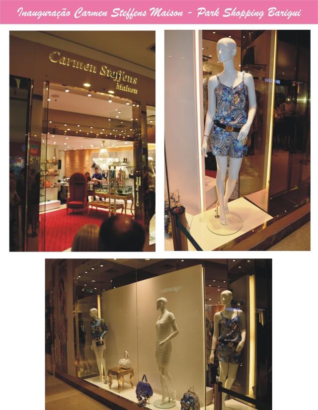 Inauguração Carmen Steffens _ Arianne Ribeiro 001