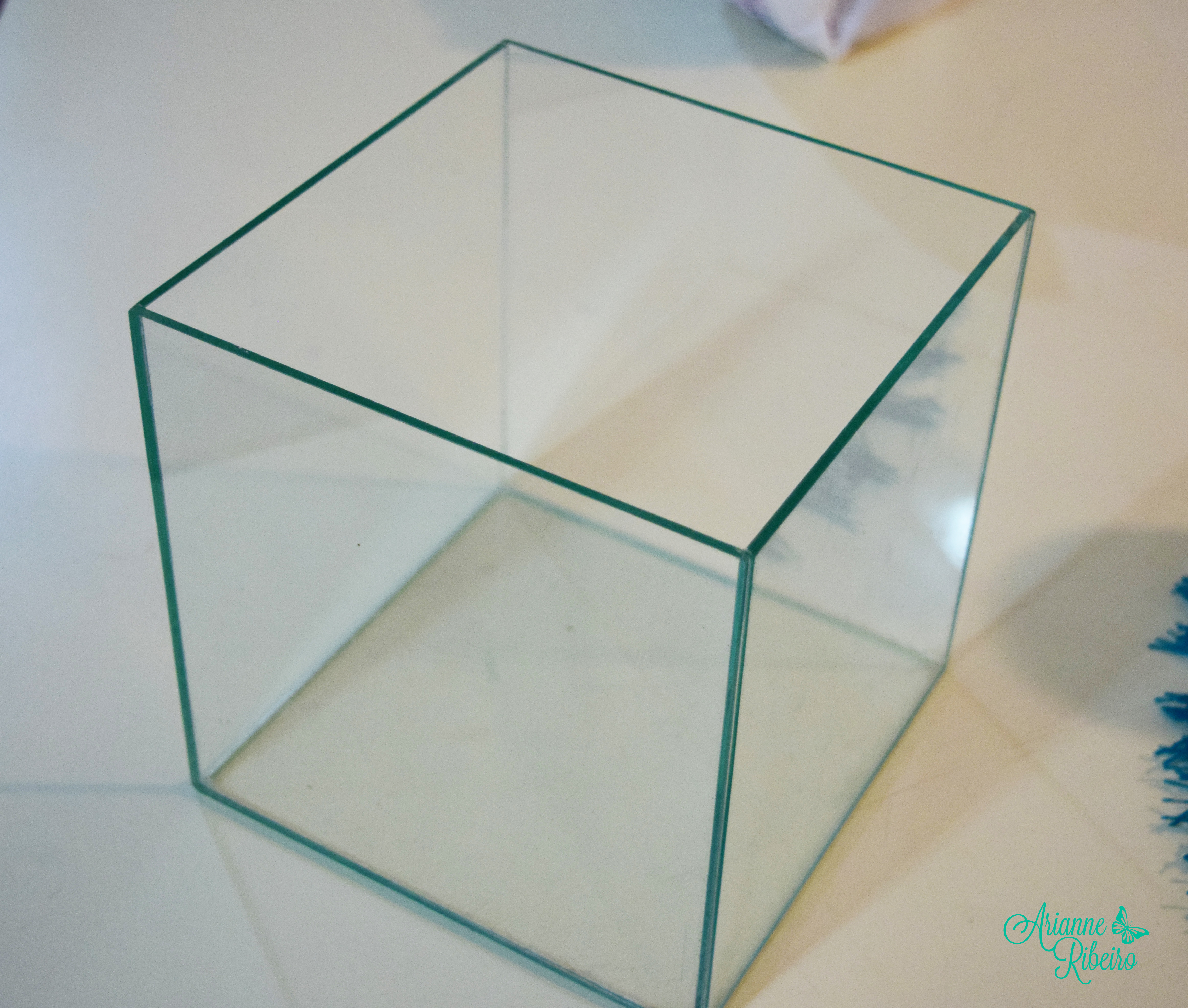 Arranjo cubo de vidro _ Arianne Ribeiro